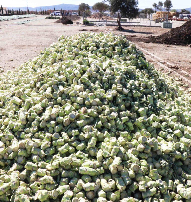 El compost bio de Naturcharc ya alimenta el suelo de todas sus fincas