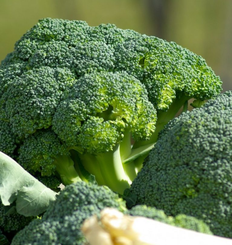 Cuatro razones para comer brócoli