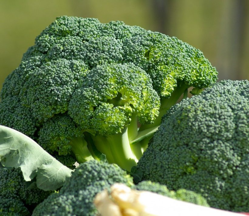 Four reasons to eat broccoli