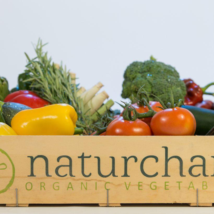 Naturcharc arranca campaña con las hortalizas bio de temporada al aire libre e invernadas